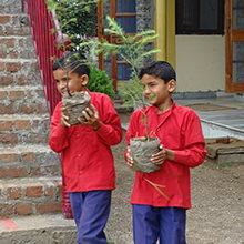 Baeume-pflanzen-Naturschule-Indien